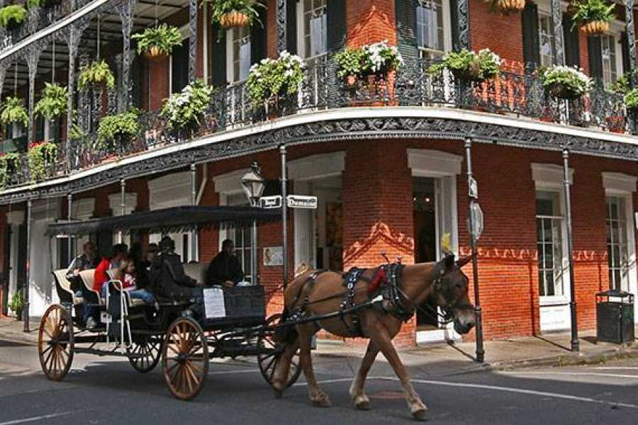 Dream Vacation Tours Louisiana, Nashville, Memphis Fall Dream tour 2020