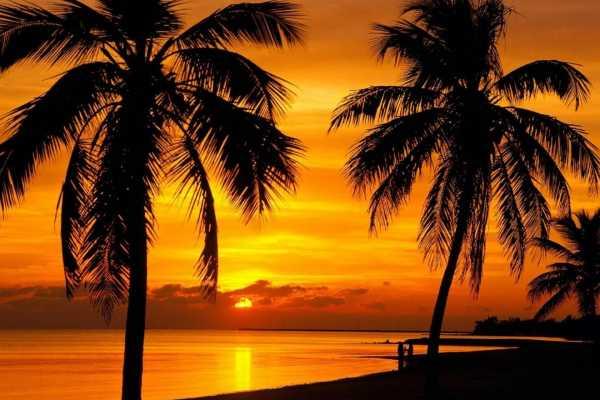 1 Day Key West Tour