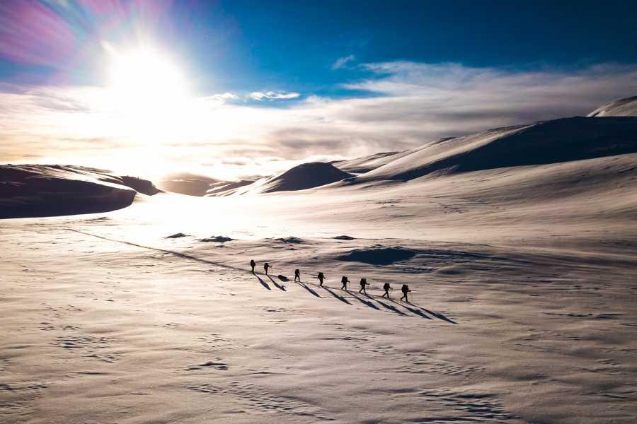 Øystein Ormåsen I Nansen sine skispor over Vossaskavlen