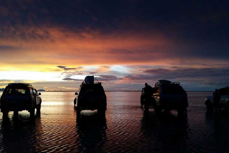 Uyuni Expeditions TRANSFER PRIVADO AVAROA-CALAMA