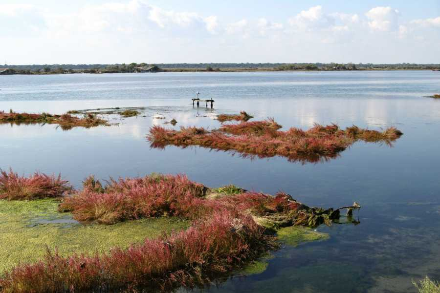 Emilia Romagna Welcome Nature in Romagna - Marina Romea