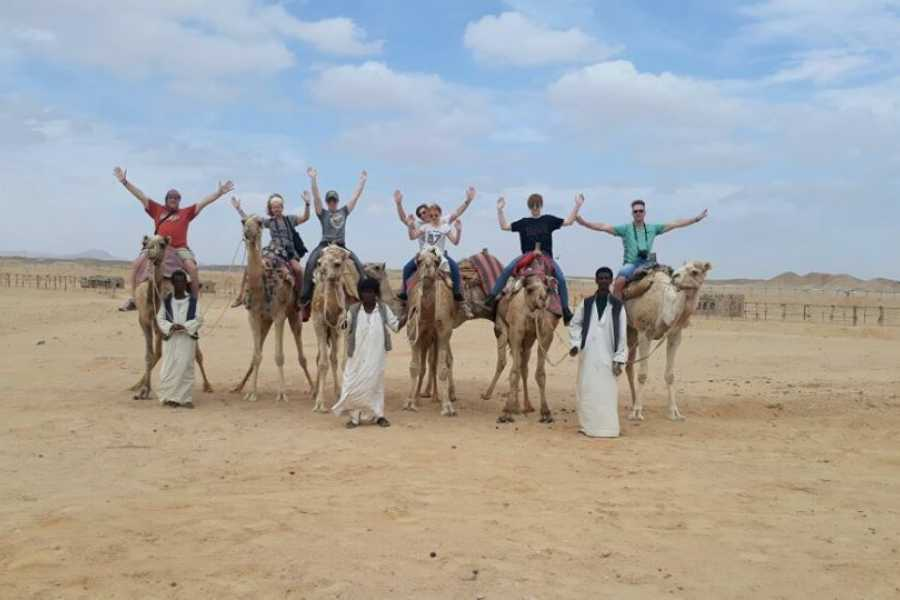 Marsa alam tours Camel ride from El Gouna