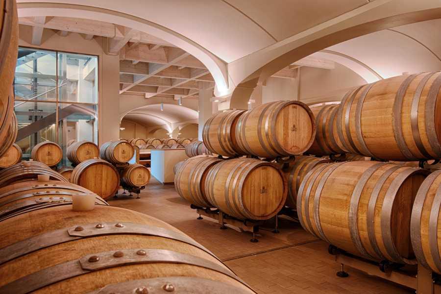 Bologna Welcome UMBERTO CESARI WINE EXPERIENCE