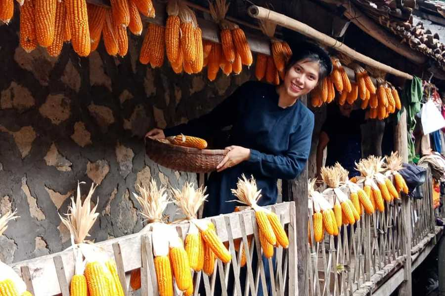 OCEAN TOURS Pasel Murey Discover Vietnam 17 Days depart Jan.26.20