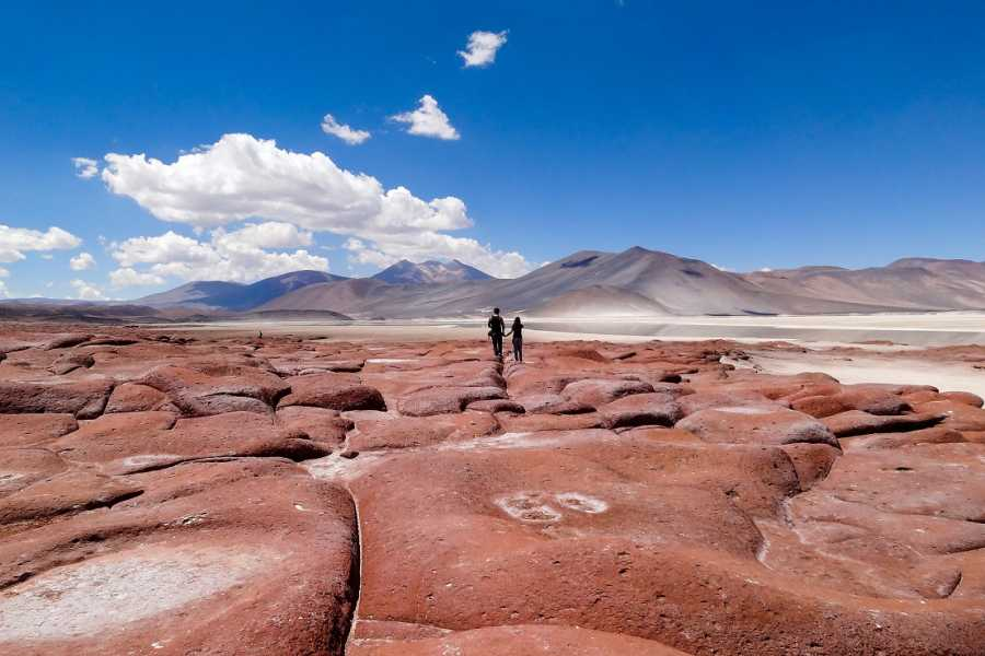 Uyuni Expeditions RED STONES AND SALT LAKES 2D