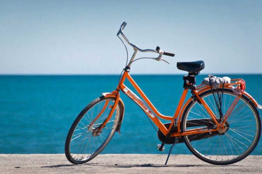 Rasmus Travels Bike Rental