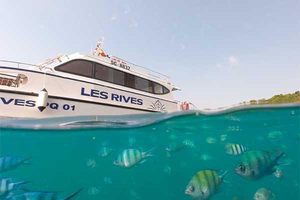 Romantic Sunset Cruise By Catamaran Speedboat