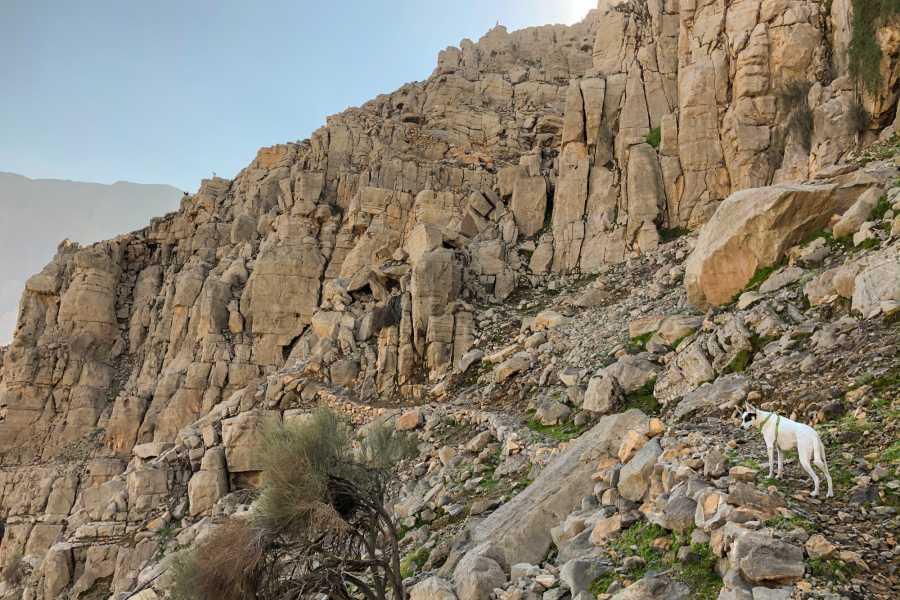 Adventurati Outdoor Scaling Jabal Jais - North Side