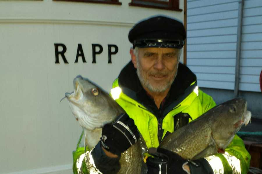 Fishing Stavanger Vi går etter ferda torsken 21ste mars / 5 hrs / Winter fishing for cod 21th March