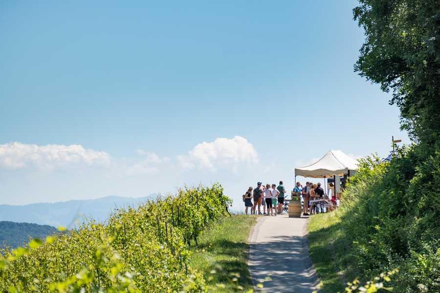 Murten Tourismus / Morat Tourisme Route Gourmande du Vully