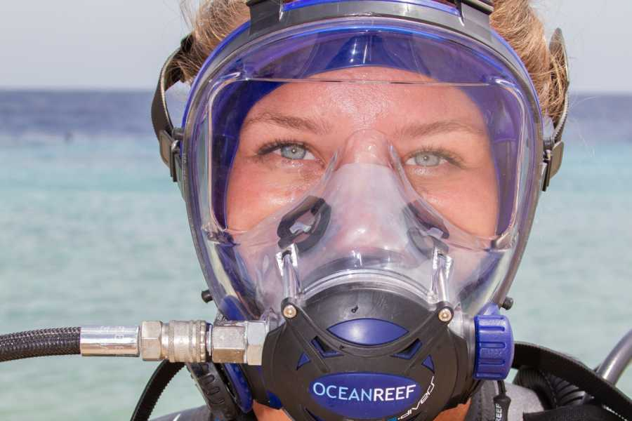 Groove Diving Full Face Discover Scuba Dive