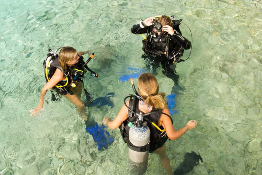Groove Diving Refresher Dive