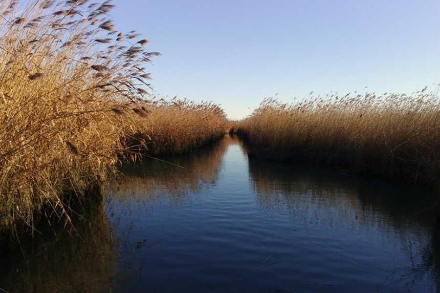 Promhotels Riccione Drei Reistage Im Po-Delta-Gebiet