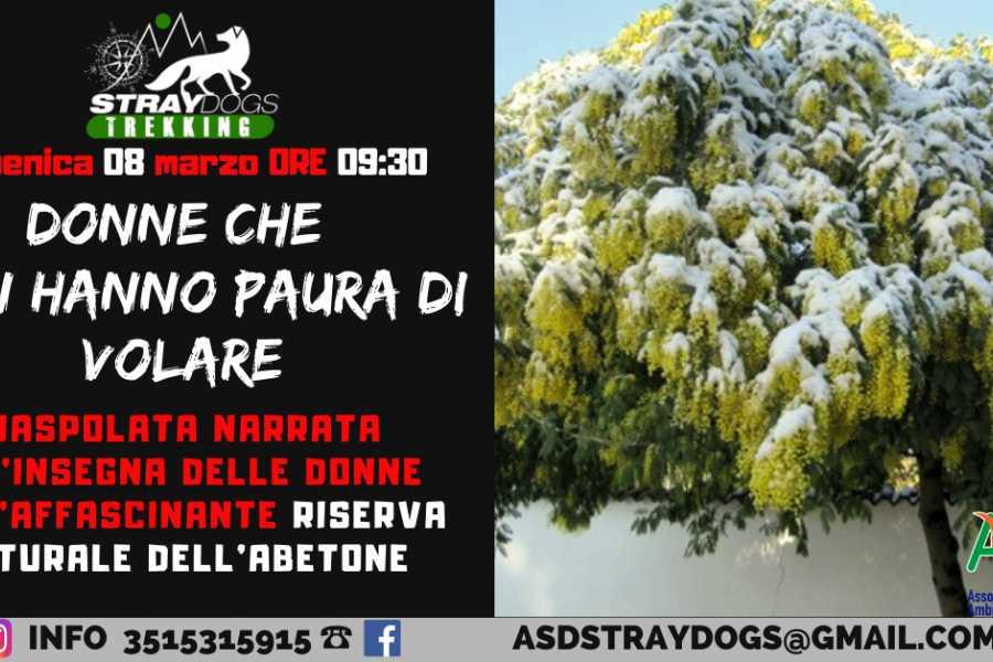Modenatur DONNE CHE NON HANNO PAURA DI VOLARE