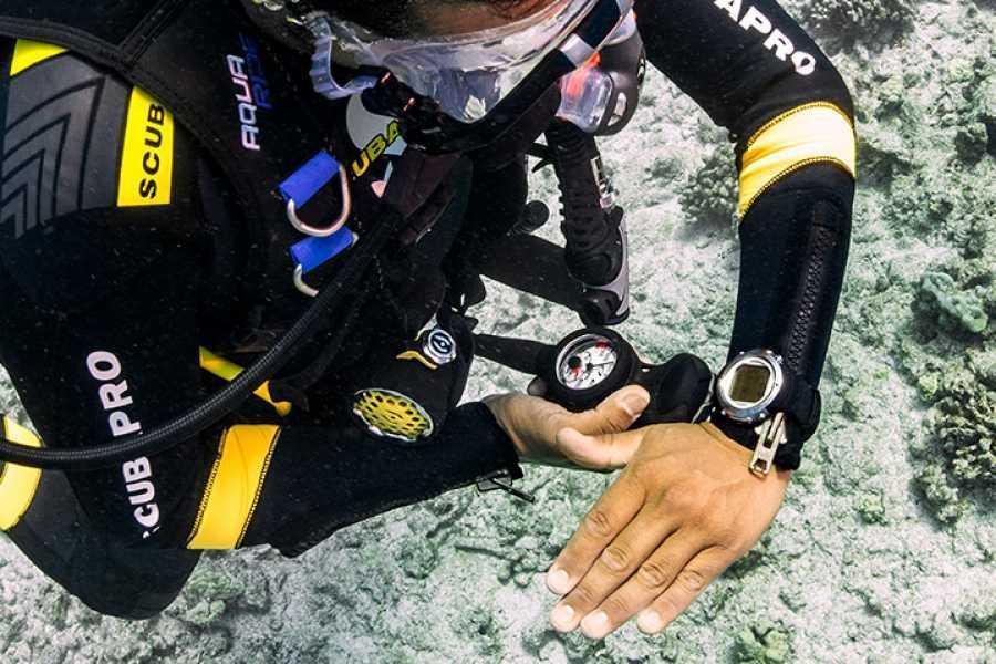 Coral divers PADI Underwater Navigator Specialty