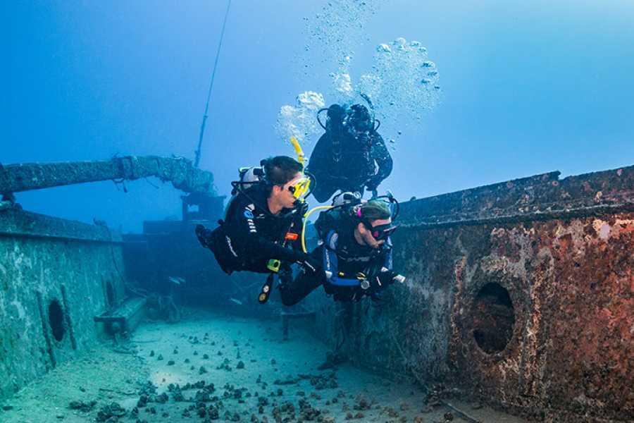 Coral divers PADI wreck specialty