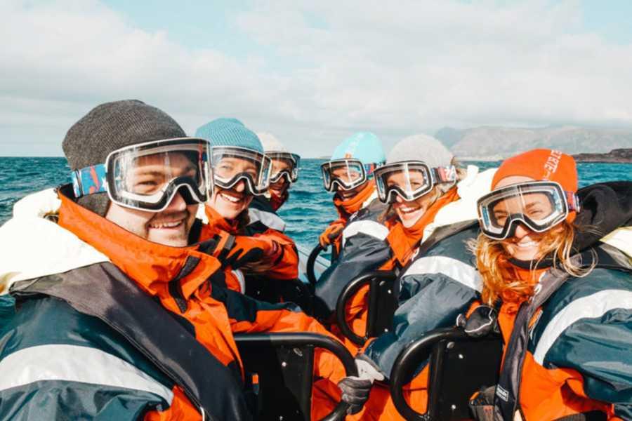 Runde Miljøsenter AS Med Coastsafari til selkolonien og fugleøya Runde