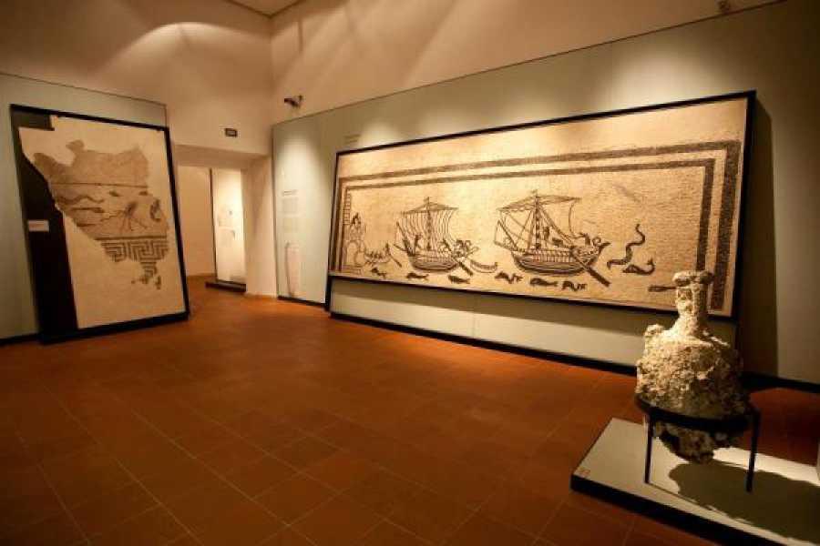 Visit Rimini Museo della Città e Domus del Chirurgo