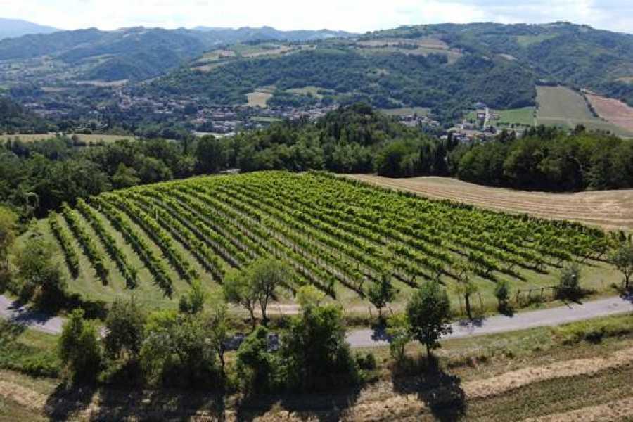 Emilia Romagna Welcome Adotta un Filare - I Percorsi del Savio