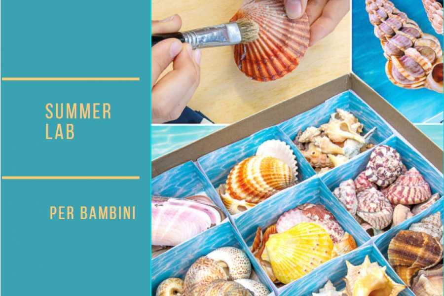 Ravenna Incoming Convention & Visitors Bureau Conchigliamo! Summer Lab