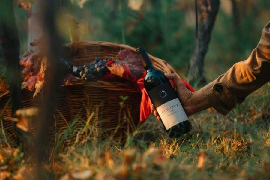Bologna Welcome Umberto Cesari Wine Experience Deluxe