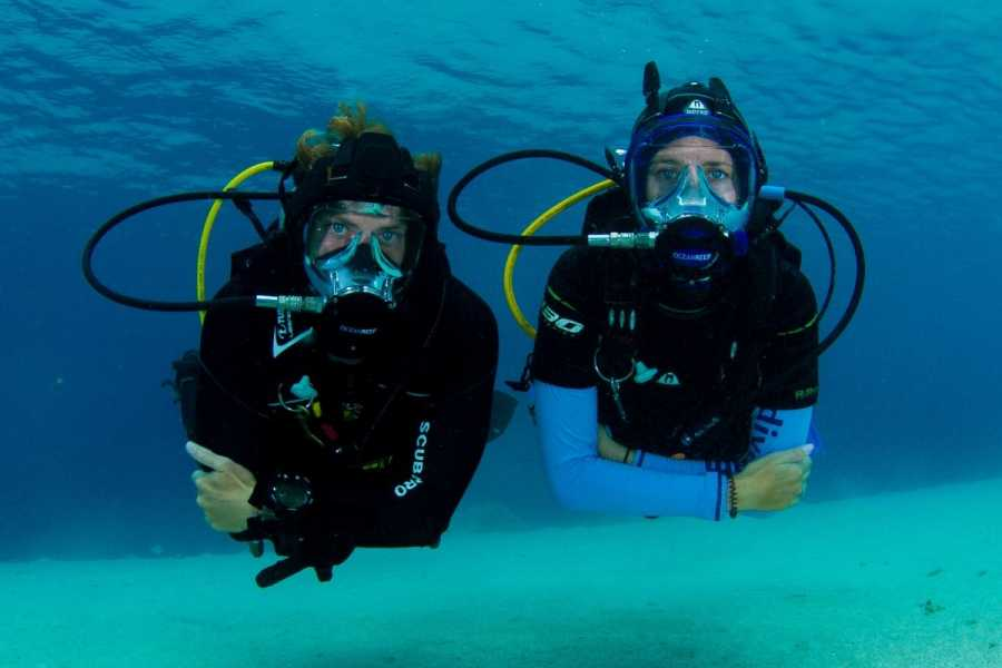 Blue Bay Dive & Watersports @Mambo Full Face IDM Discover Dive