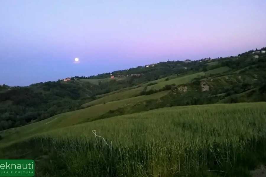 Visit Rimini Trekking e meditazione al Parco Fluviale del Marano
