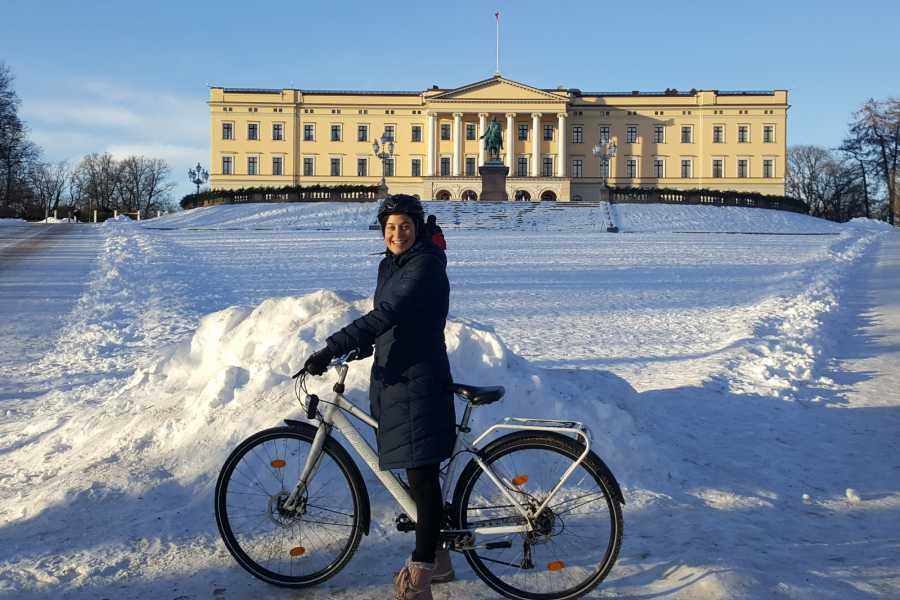 Viking Biking & Hiking Winter Bike Rental (private groups 1-4 guests)