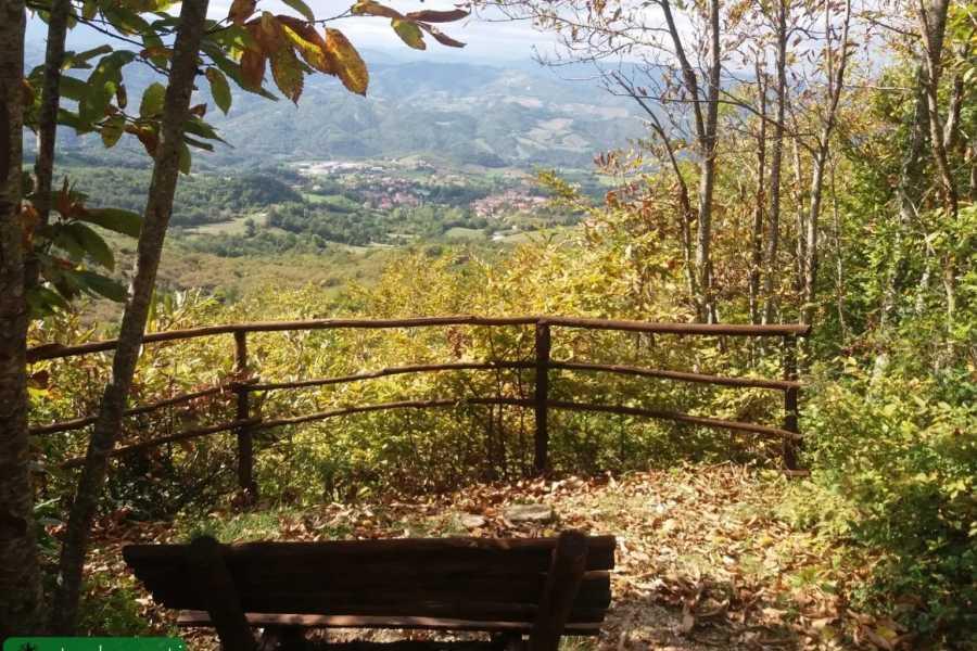 Visit Rimini Escursione ai Tre Monti: Mont'Ercole, Monte San Silvestro e Monte San Benedetto