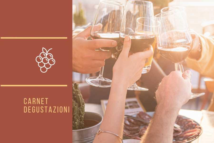 Ravenna Incoming Convention & Visitors Bureau GiovinBacco 2021- Carnet degustazione vini