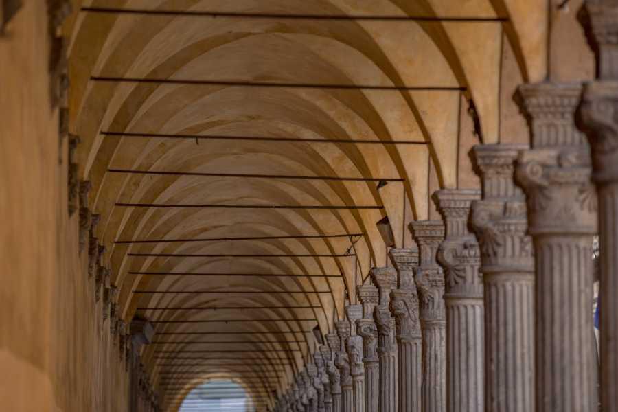 Bologna Welcome Sotto i portici...a spasso negli antichi quartieri duecenteschi
