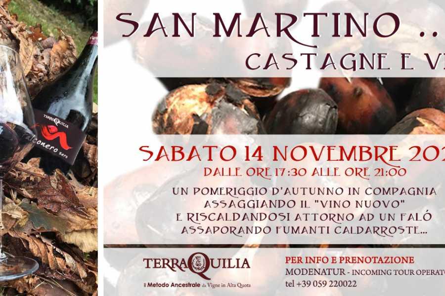 Modenatur San Martino, castagne e vino