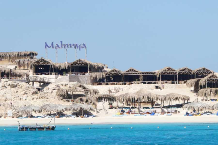 El Gouna Tours Mahmya Island Snorkeling trip from El Gouna