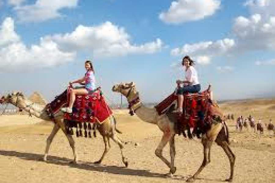 EMO TOURS EGYPT camel ride, lunch, or breakfast in an Egyptian house