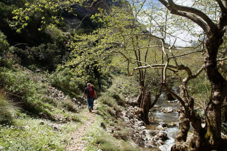 Destination Platanias HIKE - Walk the Gorge of Vultures- 25 EUR