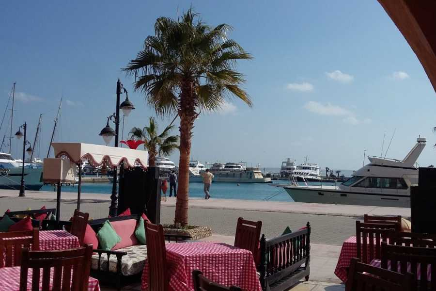 El Gouna Tours Transfer from Marsa Alam hotel to Hurghada Airport