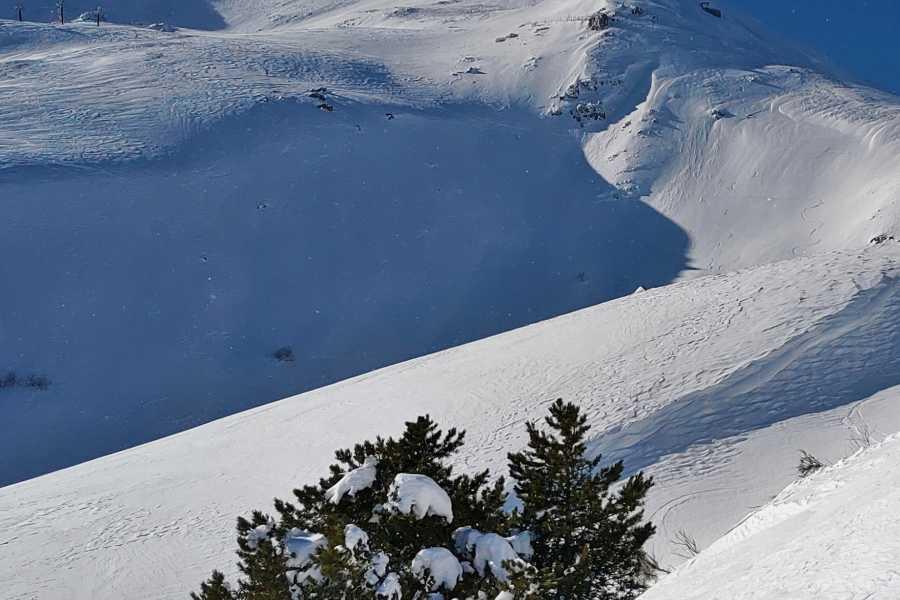 Modenatur Panorami sulla valle del Pelago, sui crinali dell'Appennino