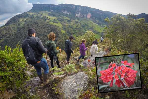 Andes Ecotours Mountains, Waterfalls & Rock Art U$70