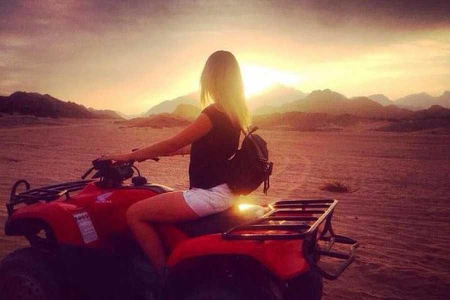 Daily tours Egypt Sunset Quad Bike Desert Safari Trip From Hurghada