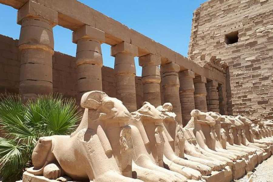Daily tours Egypt Private Day Tour To Luxor From Sahl Hasheesh
