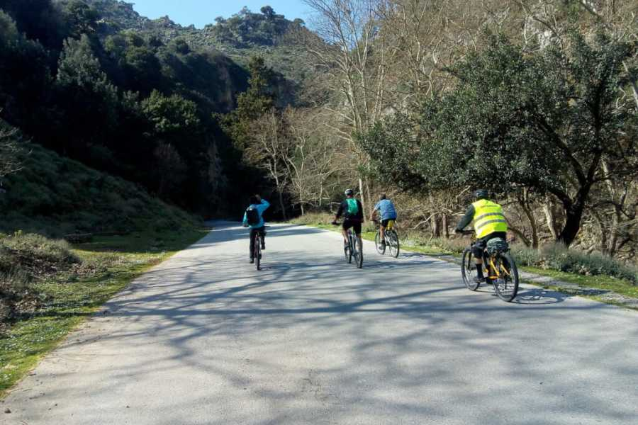 Destination Platanias E - bike Tour: Traditional Villages of Kissamos