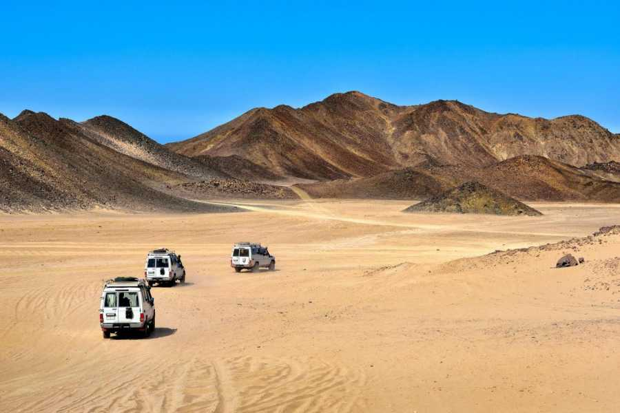 Daily tours Egypt Safari 5 in 1 Bedouin Experience (Super Safari) From Sahl Hasheesh