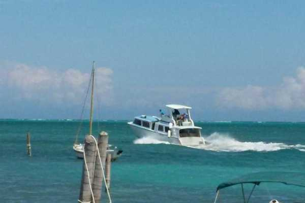 Ocean Ferry Belize San Pedro to Caye Caulker - One Way
