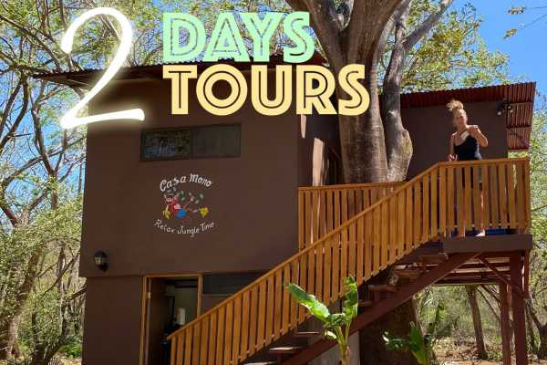 2 Tours, BBQ Dinner and 1 Night in Casa Mono Treehouse - Only Couples