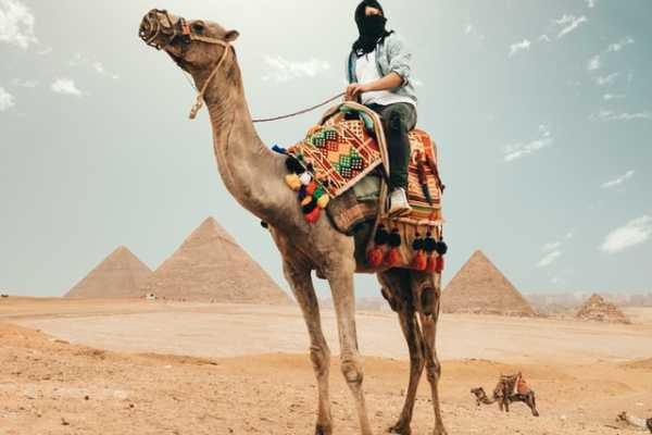 12 Days Travel package in Egypt with Nile Cruise