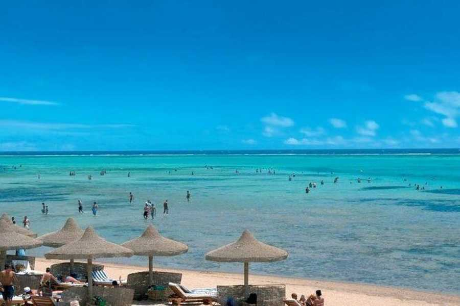 Daily tours Egypt Sharm El Luli Snorkeling Tours From Port Ghalib