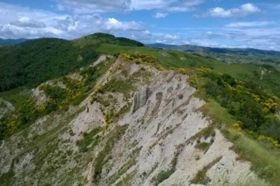 Bologna Welcome - eXtraBo Trekking serale sul Sentiero Luca Ghini