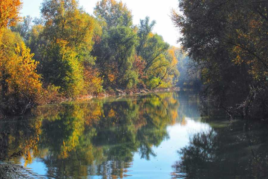 Bologna Welcome - eXtraBo Foliage d'autunno in Pianura