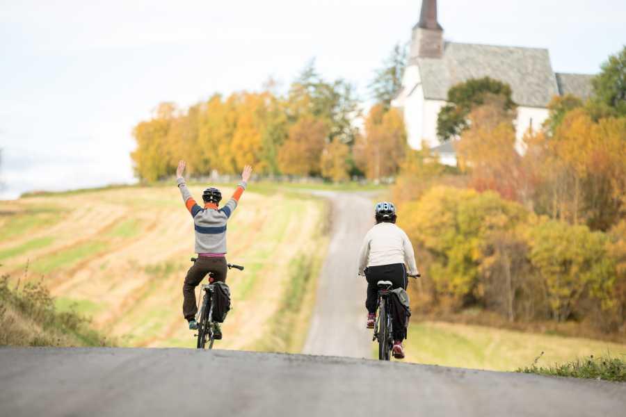 Visit Innherred Borgenfjorden rundt på sykkel