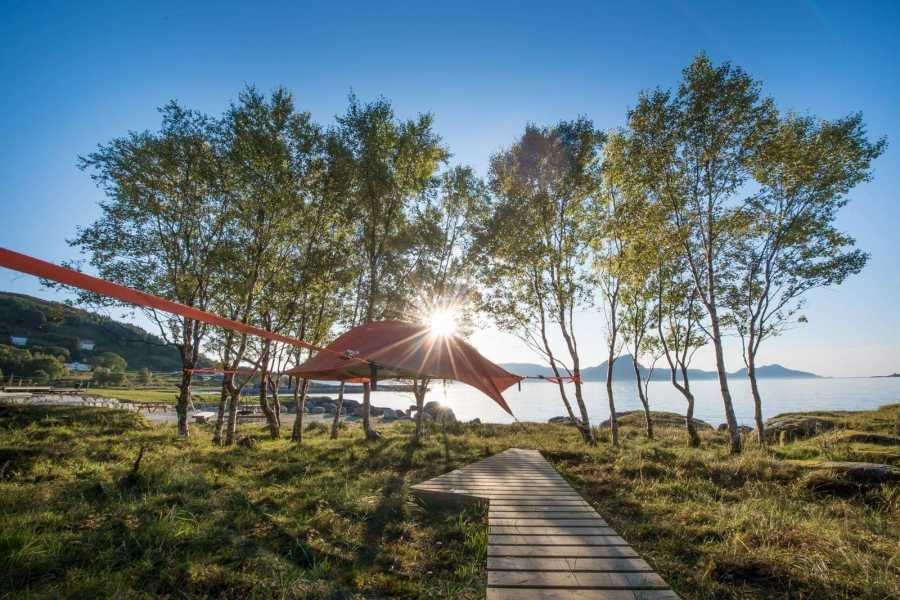 Opplev Runde AS // Hivens Bu i telt ved  Hakallegarden
